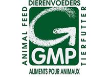 GMP International
